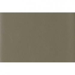 Flat Color Foil Sand Grey BS076